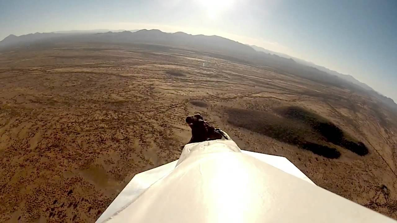 GoPro  Giant Paper Airplane