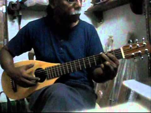 Travel Guitar Jungle Guitars India Youtube