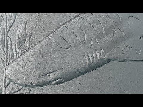 Tokelau 1 oz Leopard Shark Silver Coin