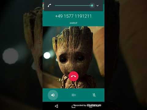 Verfluchte Nummern Whatsapp Elsa