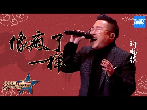 [ CLIP ] 许鹤缤《像疯了一样》《梦想的声音》第10期 20170101 /浙江卫视官方HD/