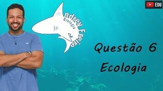 Questão 6 - Ecologia