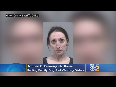 Theresa - Woman Breaks Into House, Pets Family Dog, Washes Dishes