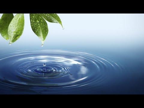 Electrolyte 101: Water, Minerals, Salt
