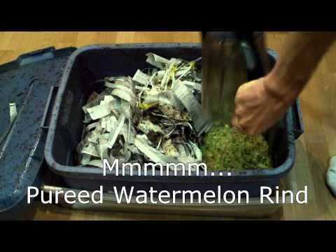How We Make All Our Compost For Next To Nothing - pt 2. Worm Bins Mp3