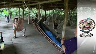 Ayahuasca: Miracle Drug or Threat to Helath? (2011)