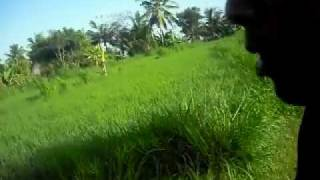 Trip to Babakan Farmland. Part 1