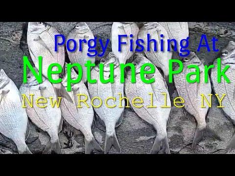 Neptune Park New Rochelle NY | Porgy Fishing