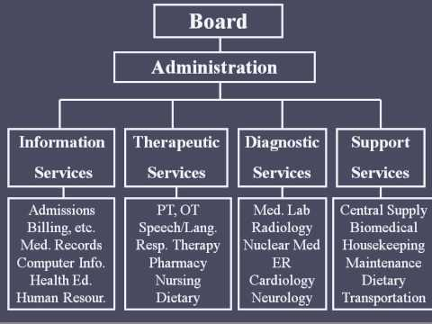 Hospital Organizational Structure  Youtube