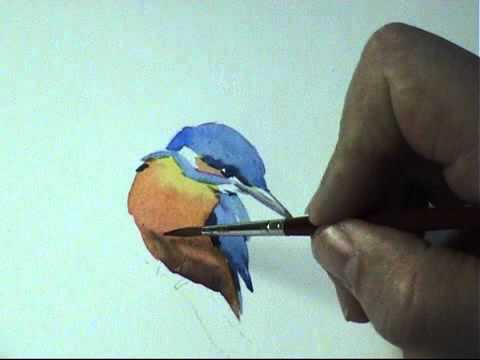 Vogels tekenen - ijsvogel,  drawing birds - kingfisher