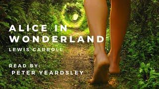 Alice's Adventures in Wonderland Audiobook | Relaxing Sleep Story | Unintentional ASMR screenshot 4