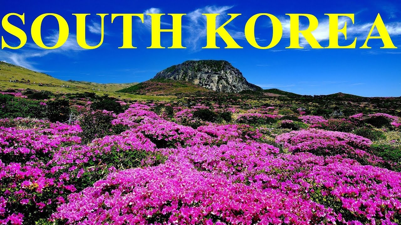 Places korea south top in 30 Things