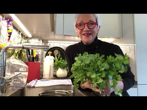 HOW TO: Clean & Store Cilantro