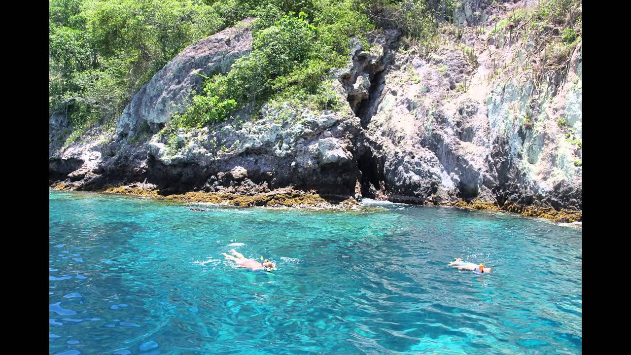 Martinique Wallpaper Hd Leaf Wallpaper Banana Leaf HD Wallpapers Download Free Images Wallpaper [1000image.com]