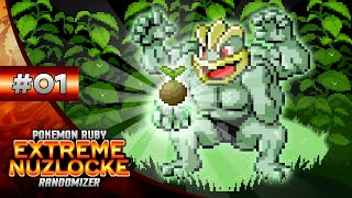 Pokemon EXTREME Ruby Nuzlocke - Episode #01: DEATH BY SEEDS!