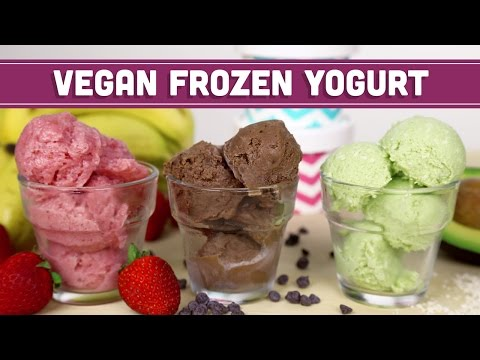 Vegan Frozen Yogurt Mind Over Munch