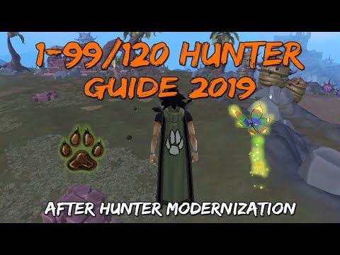 1-99/120 Hunter Guide 2019/2020 | After Hunter Modernization [Runescape 3]