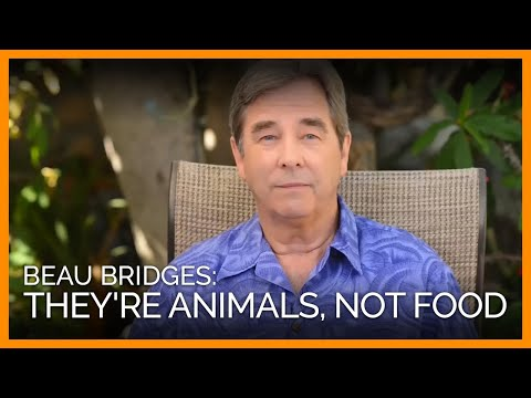 Beau Bridges on Ocean Creatures: 'They're Sea Animals, Not Seafood'