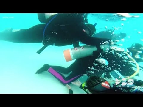 adaptive-program-helps-people-with-disabilities-learn-to-scuba-dive
