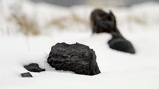 Czarne Złoto (film dokumentalny)