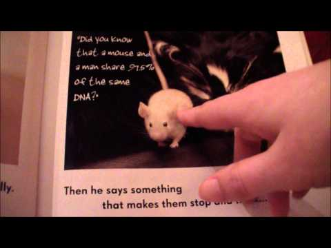 All Cats Have Aspergers - ASMR Soft Spoken Reading
