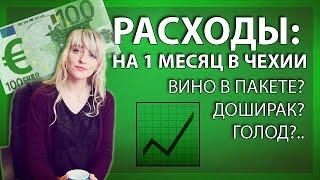 Сколько стоит стать студентом в Чехии.