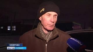 В Кемерове ищут хозяев потерявшейся собаки