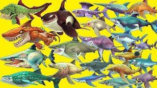 Hungry Shark World - 2019 - ALL 28 SHARKS UNLOCKED | Gameplay Walkthrough [FHD]
