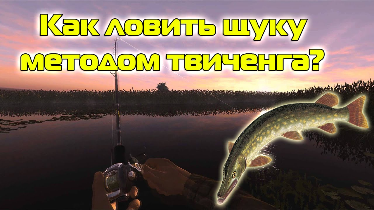 fishing planet на что ловить