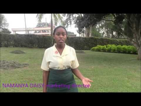 Magnates Video