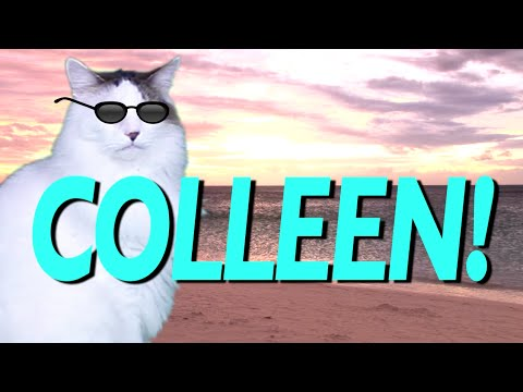 Happy Birthday Colleen Epic Cat Happy Birthday Song