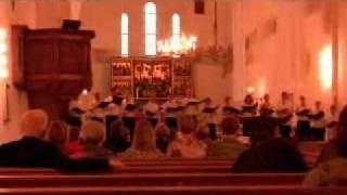 ArtTalentsCom : Sydhavns Kantori Choir - Dotter Sion
