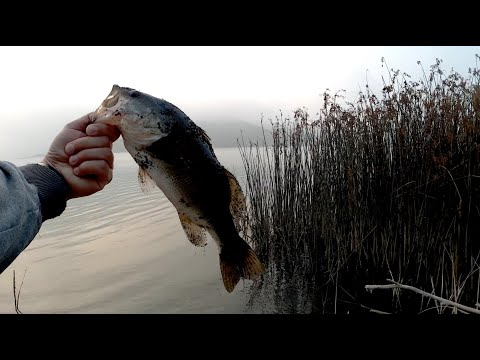 Bass Fishing At Whale Rock Reservoir.