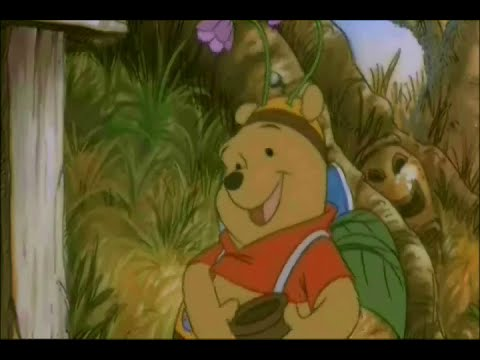 Pooh's Adventures of Scooby Doo and the Ghoul School clip 3