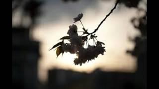 坂本九 - 夕やけの空
