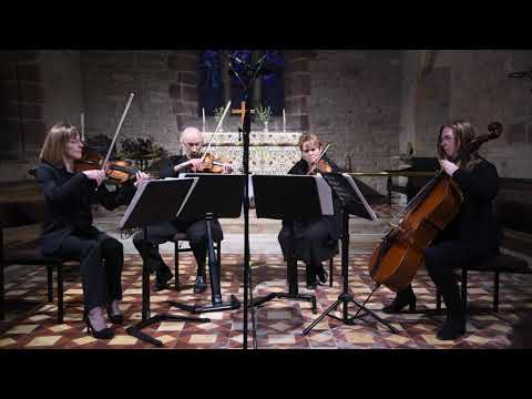 Shallow-A Star is Born-Capriccio Quartet-arranged by Bojana Jovanovic