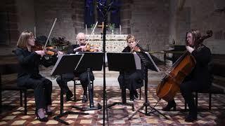 Shallow-A Star is Born-Capriccio Quartet-arranged by Bojana Jovanovic