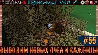 LP ► Minecraft ► [ТЕХНО-МАГ V4.0] Сезон №4 E55 - Выводим новых пчел и саженцы