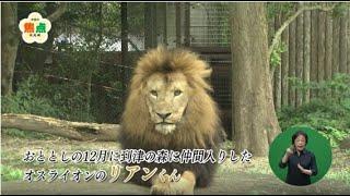 到津の森公園(令和3年9月12日放送)