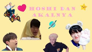 Hoshi with his brain | Funny Moments (sub indo)