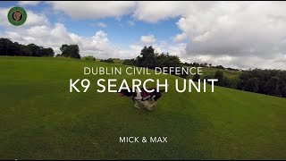 Dublin Civil Defence - K9 Search Unit - Max