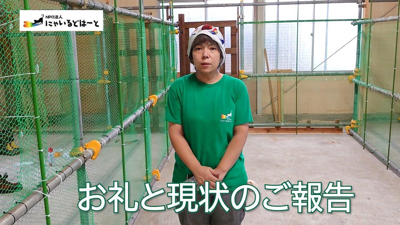 #166【お礼とご報告】多頭飼育崩壊の現場から保護施設へ