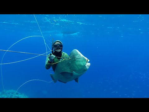 Spearfishing - Naaoutea Waters !