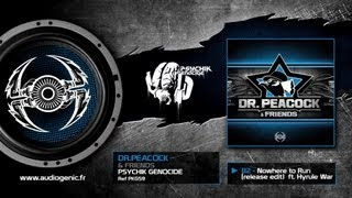 DR.PEACOCK - B2 - Nowhere to Run (release edit) feat.Hyrule War [& FRIENDS - PKG59]