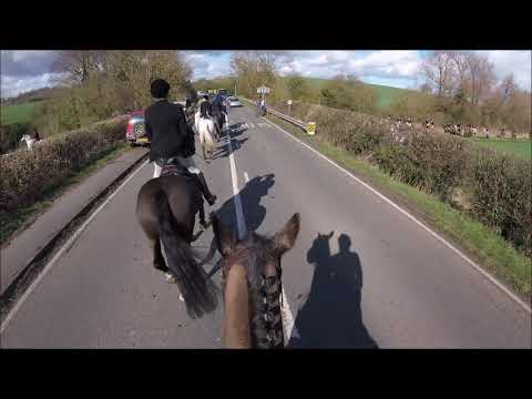 The Readyfield Bloodhounds Closing Hunt Meet 2019 (GoPro HeadCam)