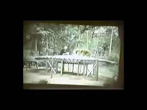 The Alien Agenda, Hidden History Compilation