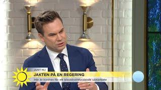 """Så ska Löfven lyckas locka över allianspartier: """"Blir ett grötig"""