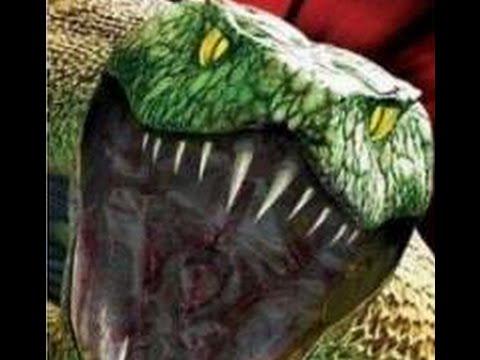 python 2 en francais 2002