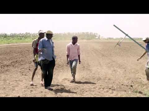 SOMALIA - THE ROAD TO SELF SUFFICENCY IN FOOD PRODUCTION - AGRICULTURE IN SOMALIA(BY JIILKA CUSUB)