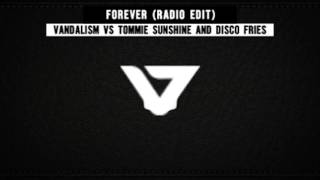 Смотреть клип Vandalism Vs Tommie Sunshine And Disco Fries - Forever